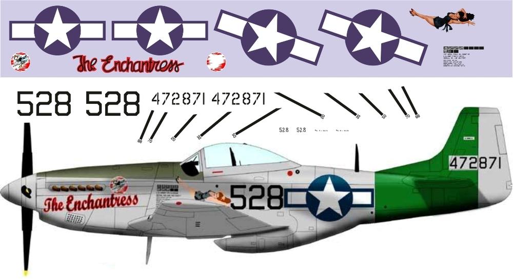 P-51 Mustang (Pin-art) 1-48 (350).jpg